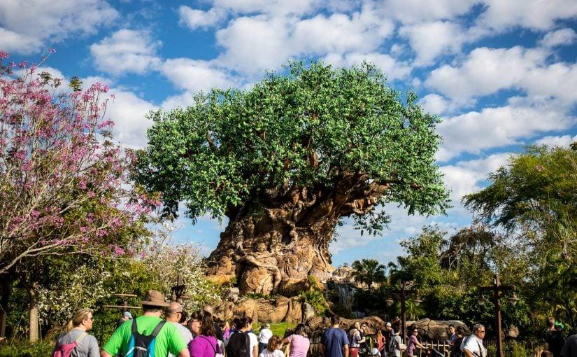 The Circle of Life at Disney's Animal Kingdom Park